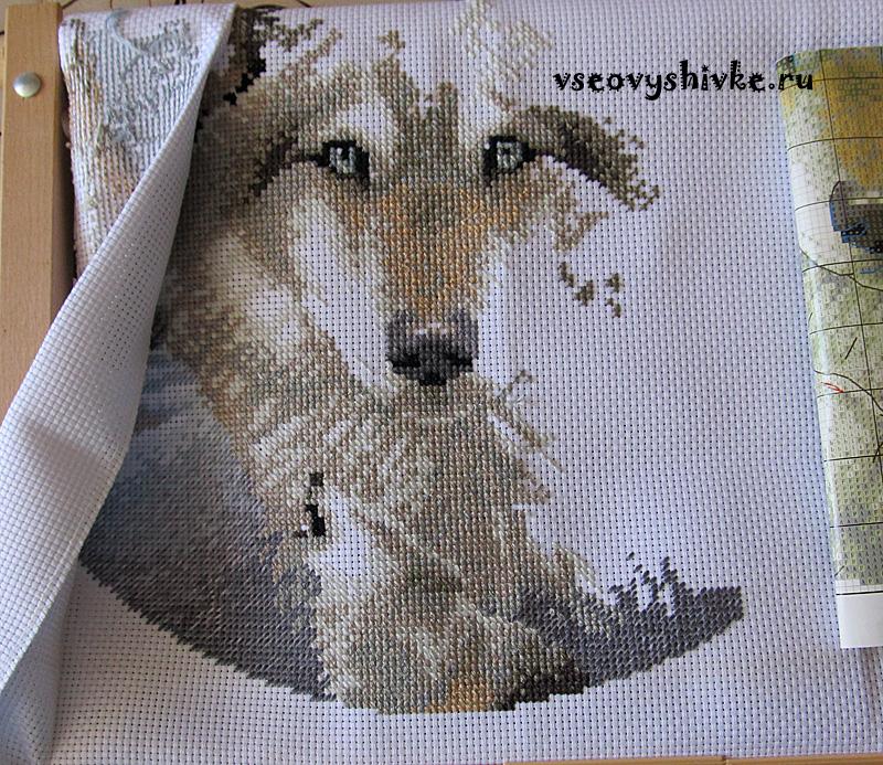Волки вышивка крестом приметы 1